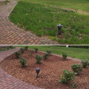 Dārzu ierīkošana
