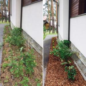 Dobju, dārza rekonstrukcija